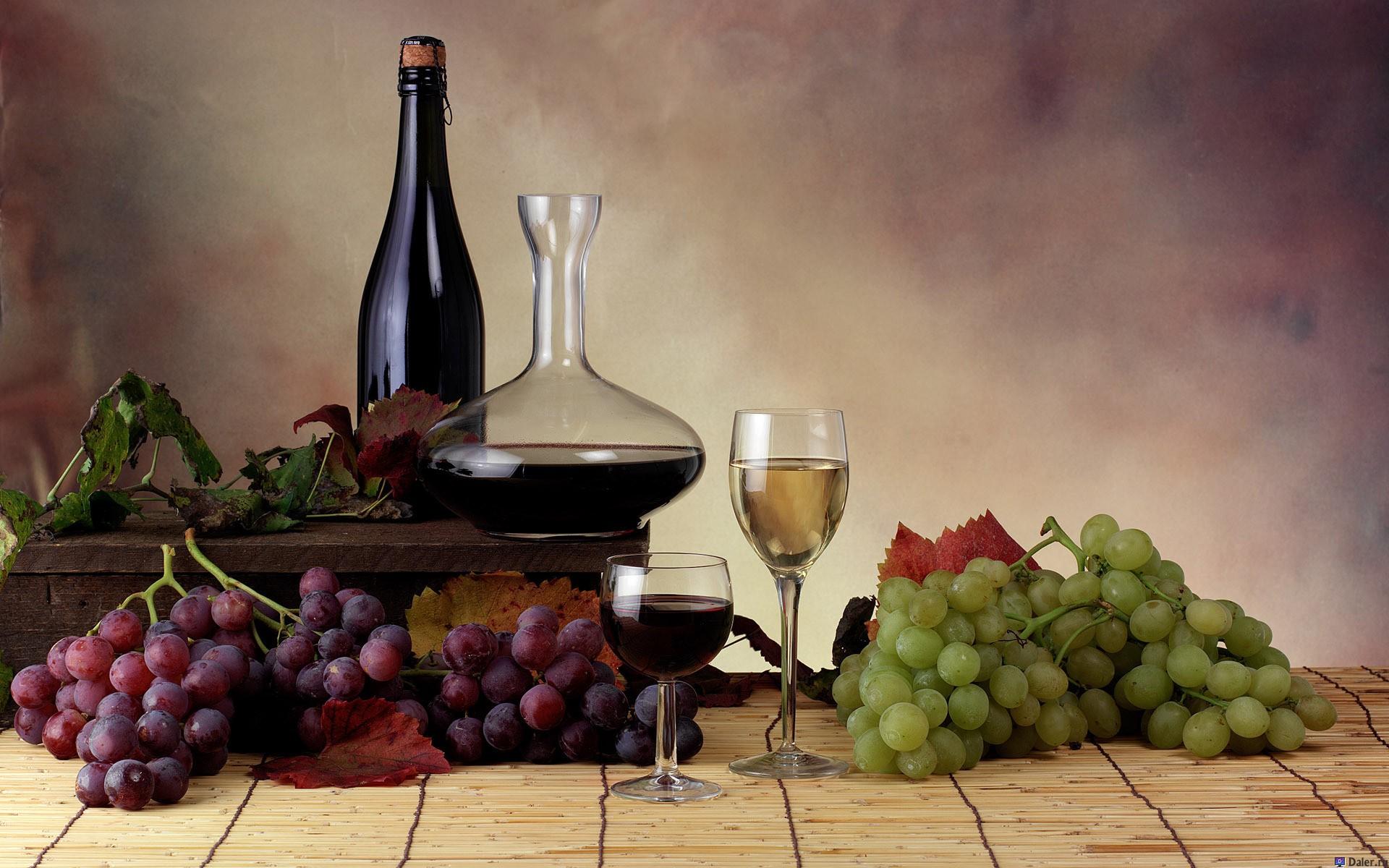 vino-i-vinograd-krasivo